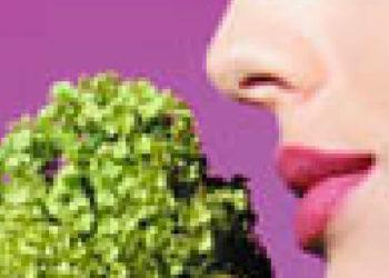 Thérapies alternatives et bio-énergétique@2x